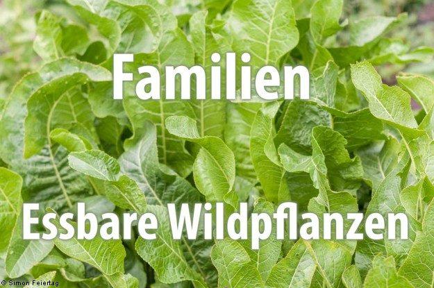 Familie - Essbare Wildpflanzen